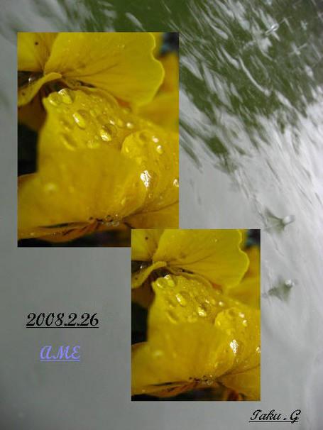 Img_8088