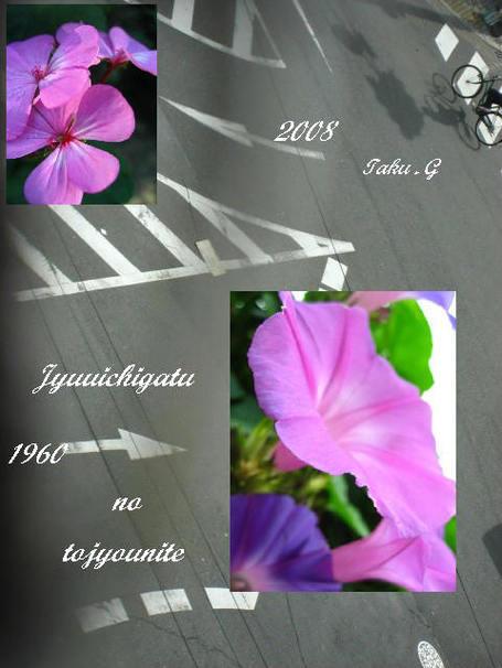 Img_5018