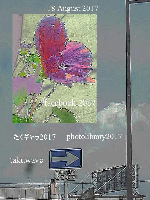 Img_3027_1_1_1