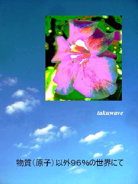 Img_4520_1_1_1_1