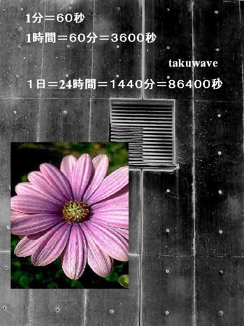 Img_6380_1_1_1