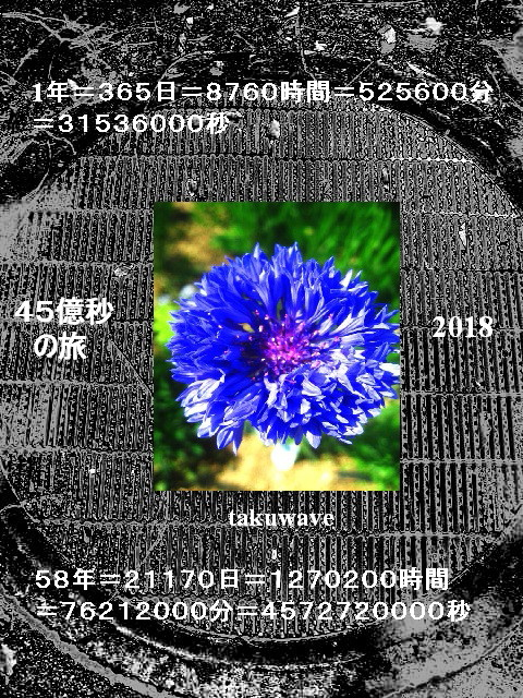 Img_6381_1_1_1