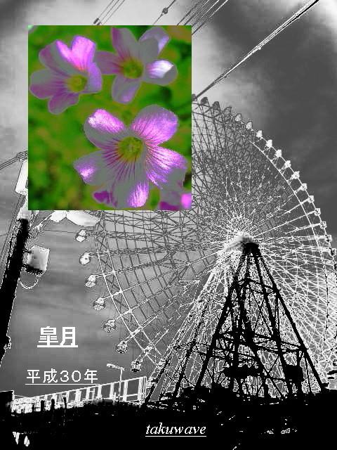 Img_6573_1_1