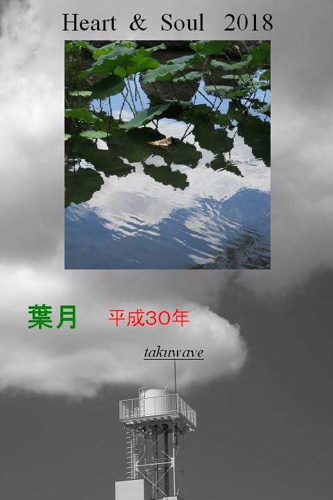 Img_0880_1_1_2
