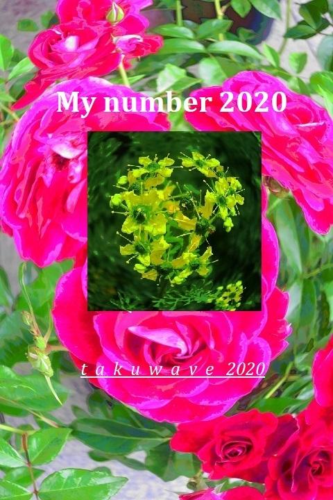 Img_1799-1